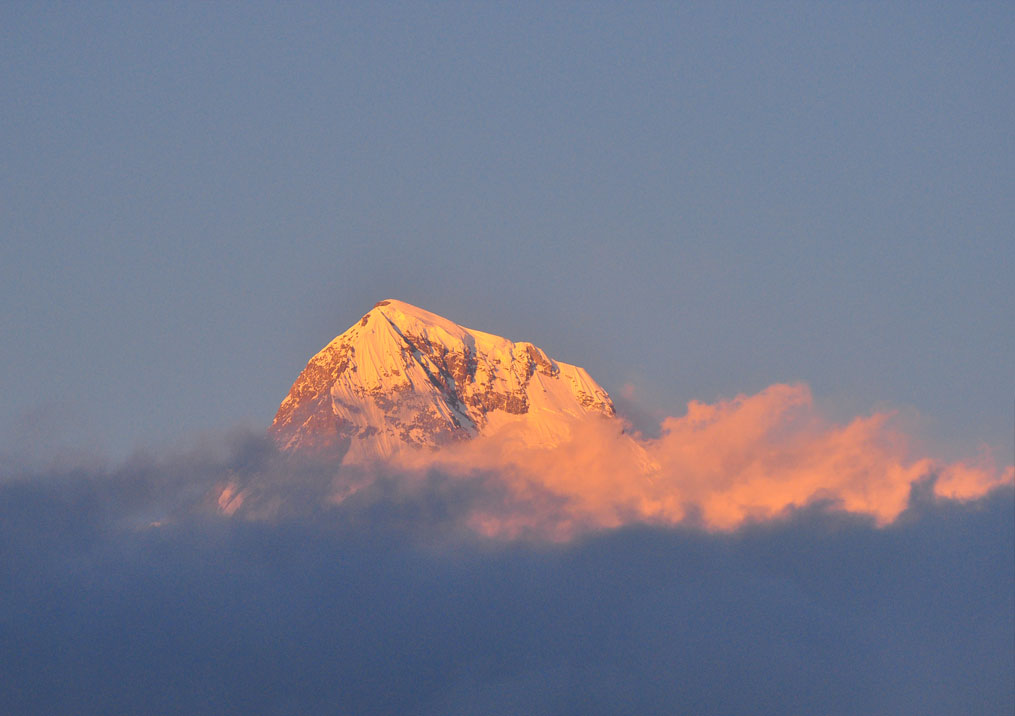 Day 10: Sontha to Ghorepani (4hrs, 2874m)