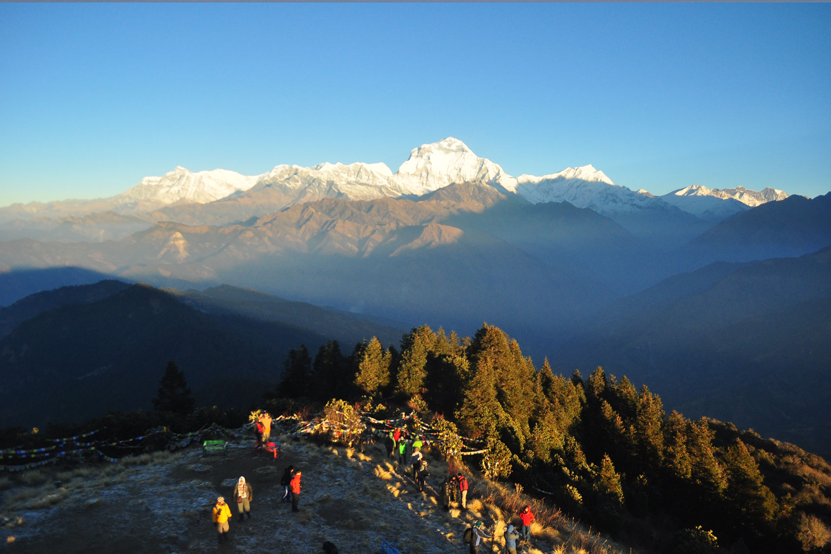 Day 5: Trek from Ghorepani (2874m) to Poon Hill (1hr, 3200m) and to Tadapani (5hrs, 2630m)