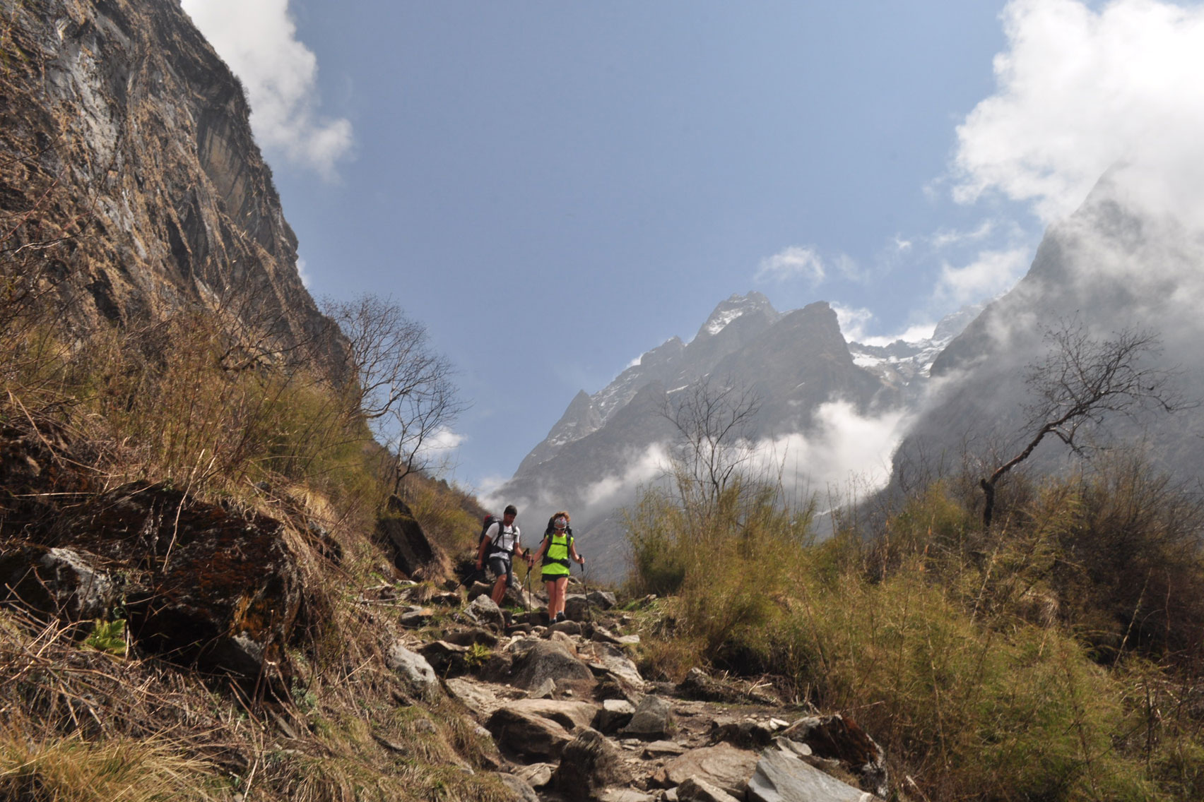 Day 10: Trek from ABC (4130m) to Bamboo (7hrs, 2310m)