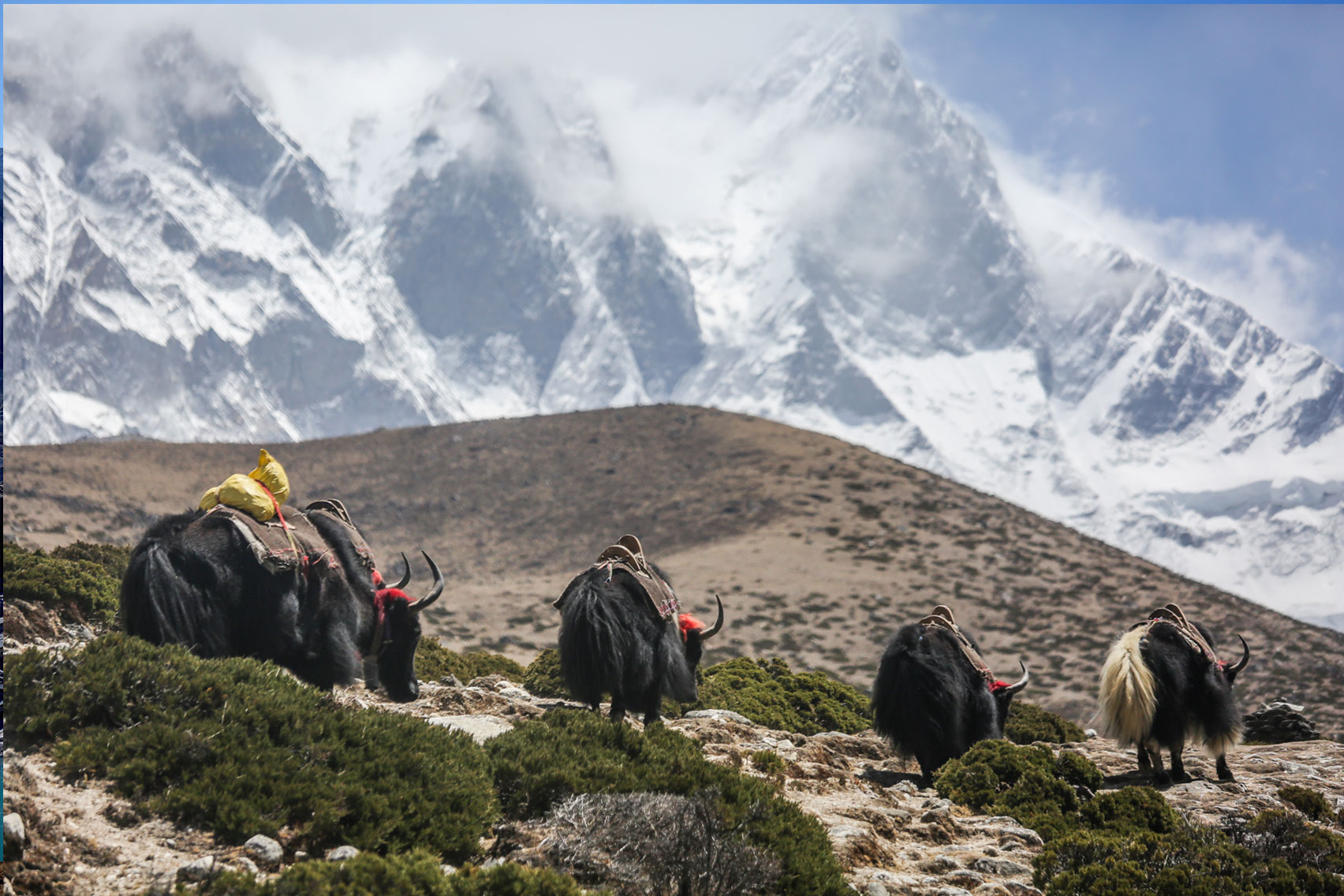 Day 13: Trek from Thame (4000m) to Monzo (5hrs, 2845m)