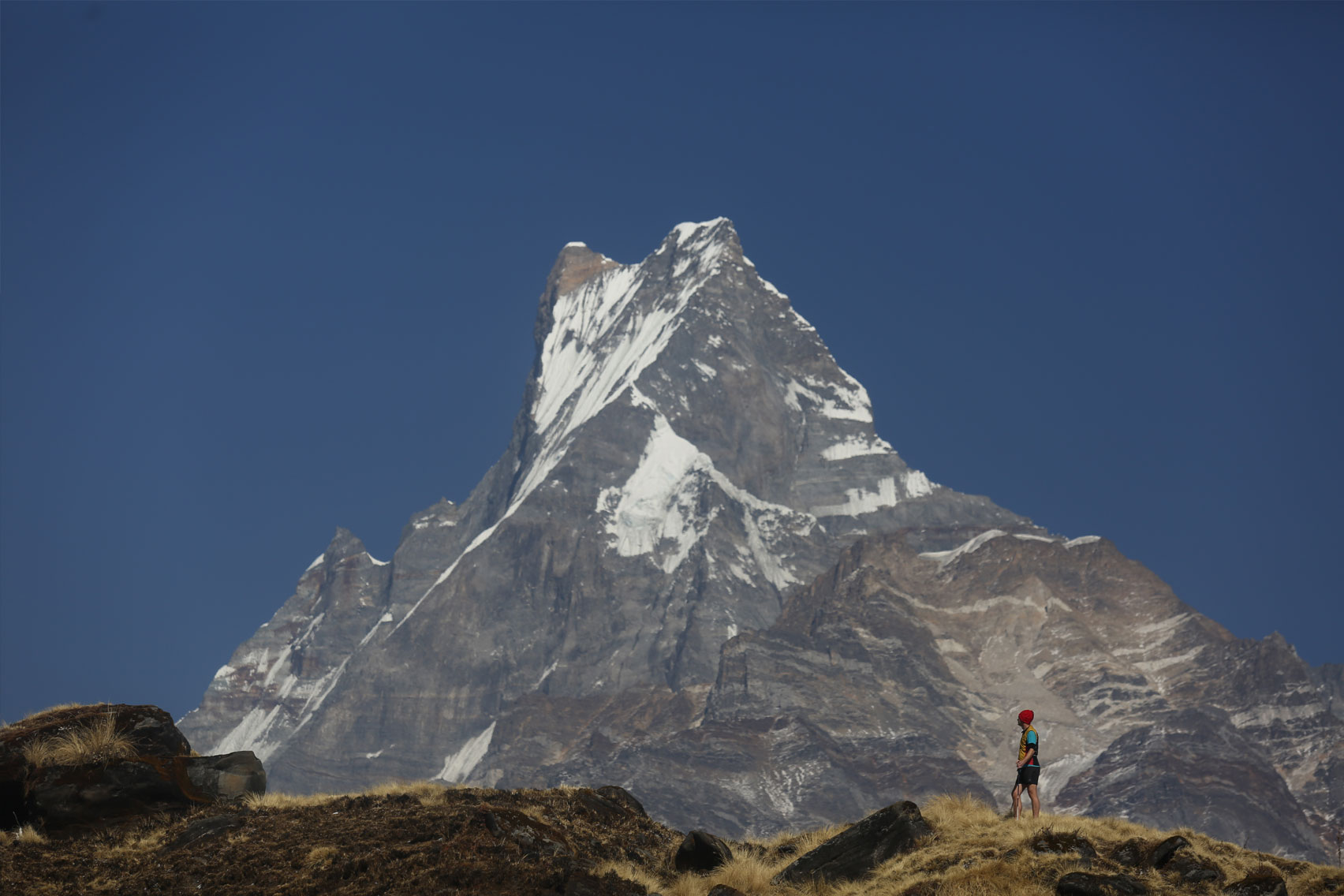 Day 5: Trek from Jungle Camp (2525m) to Low Camp/Humaal (4 hrs, 2975m)
