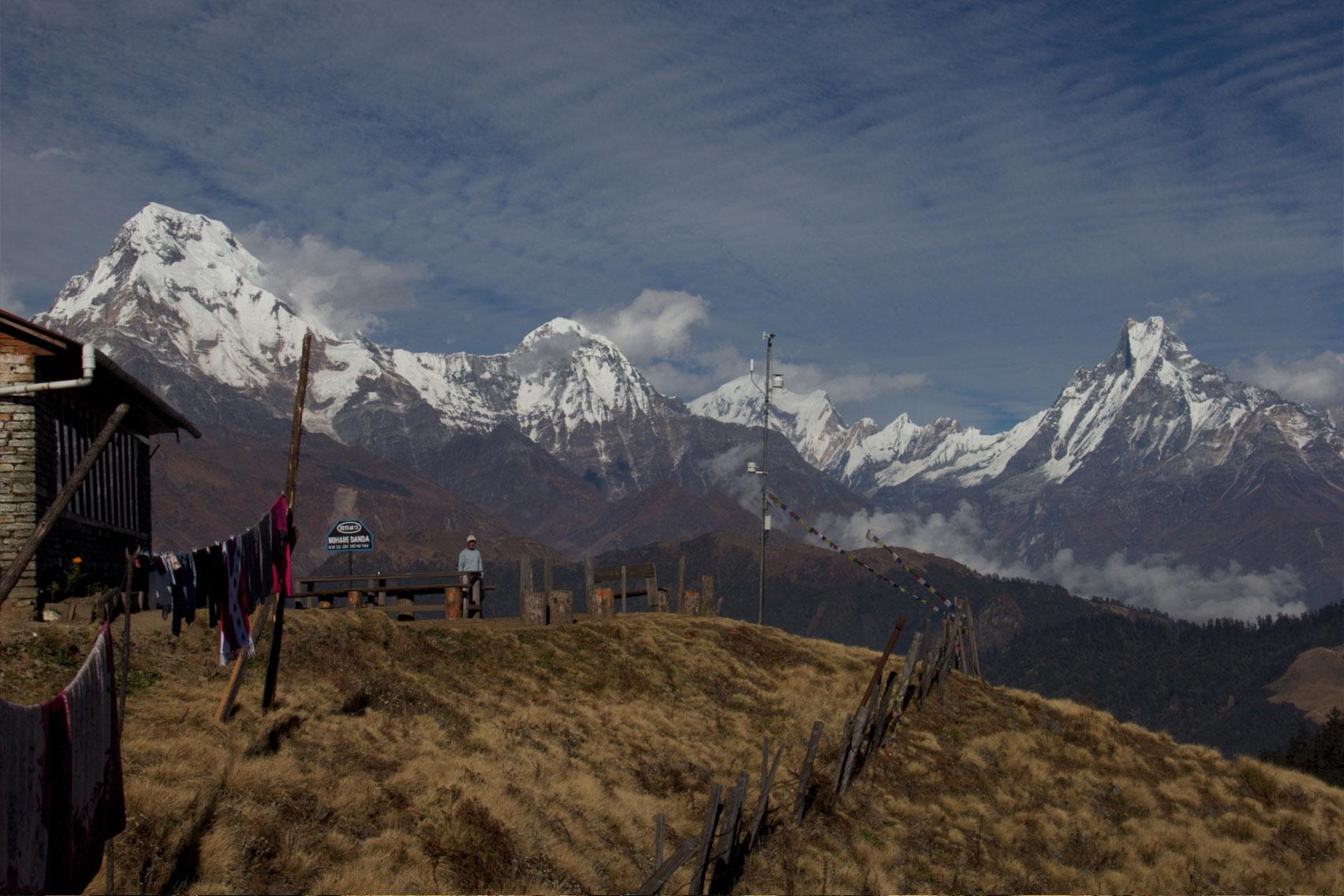 Day 5: Trek from Nagi (2320m) to Mohare Danda (6hrs, 3300m)